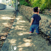 【景點】中壢老街溪步道-遛小孩的好所在