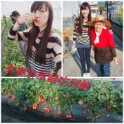 [國外旅遊] 日本 東京 跟著Klook行程來草莓吃到飽