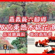 故宮東路木棉花道 嘉義縣六腳鄉賞花景點;蒜頭糖廠前的路邊木棉花道。