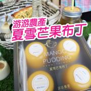 【團購美食】夏雪芒果布丁 送禮好氣派 甜滋滋在心裡 野餐點心好精緻