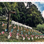 【南投】婆婆媽媽團衝合歡山/超罩均亞小客車