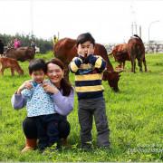 【新北林口旅遊】八里水牛坑/林口大峽谷。運氣好能遇見牛群吃草,是熱門打卡秘境景點
