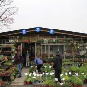 台北。北投。傳遞盆中的療癒風景 / 美集庭園藝
