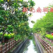 【景點】台南新化~新化南圳綠堤‧鳥語花香‧還有稻香‧健身好去處