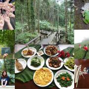 嘉義阿里山國家風景區|土匪守護山林生態體驗,龍美景觀步道、山林午餐饗宴、茶園秘境,寓教於樂一日遊。