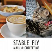 《彰化咖啡》穩定飛行模式Stable Fly│永樂街巷弄裡玩樂復古靈魂的老宅咖啡館
