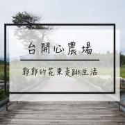 【花蓮遊記】台開心農場~洄瀾灣出海口的親子共遊景點