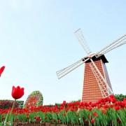 【台中-后里區】2017中社觀光花市鬱金香花季(花期至3月中旬)
