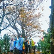 宜蘭太平山國家森林遊樂區 [山毛櫸國家步道] 被雨打亂了整個行程