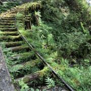 【遊び】宜蘭|太平山最美小徑-【見晴懷谷】