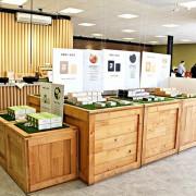 【臺灣茶摳肥皂故事館】苗栗景點。DIY肥皂課程。隨意肉圓