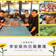 【苑裡火車站】台中大甲李安妮農場/向日葵🌻 品嚐道地農場美食🍗、DIY芋頭酥