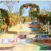 [新北鶯歌]炮仗花拱門。3D彩繪步道~永吉公園