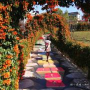 【新北鶯歌景點】永吉3D公園 親子一日遊免費景點 共融式遊樂場溜小孩超推薦 炮仗花隧道3D彩繪牆拍照打卡讓網美們超愛