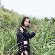 樹林三角埔頂山 /IG打卡景點 /新北秘境