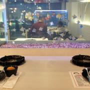 ★高雄楠梓★【小東火鍋】吃個鍋也能看魚兒水中游/楠梓火鍋/魚缸座位。