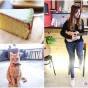 桃園八德美食-猫舌珈琲-療鬱的貓咪陪你用餐隱藏巷弄內的咖啡廳/早午餐/下午茶