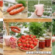 苗栗大湖鄉採草莓推薦。莓李帽草莓園馬拉邦山上草莓酸甜得宜品質好--踢小米食記