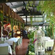 台中旅遊 同時賞櫻賞梅賞楓森林系景觀餐廳。千樺花園。法式料理加上絕美景觀好吃好拍CP值很高