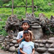 【台中北屯旅遊】郭叔叔獼猴生態區。近距離觀賞野生猴子王國,自然互動很有趣