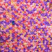 【食記】基隆市-信義區║晴天公園➽冰淇淋+飲料任你吃