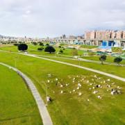 新北親子景點|大都會公園幸福水漾園區|2020最新地景藝術|60隻小綿羊陪我們過新年|辰光橋愛情水晶洞|過年走春好去處