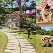 【桃園大園▸親子寵物餐廳 陽光莊園】毛孩放風好去處!遼闊空間自在跑跳