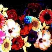 【台中】后里花博森林園區★友達微美館★用556吋顯示器拼接牆★展現出大自然的奧妙美麗之處★讓人嘆為觀止