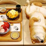【食。台中】此木二水 Shiba Kori〜柴犬雪花冰專売店。超療癒柴犬、日式手工冰磚,今夏人氣必吃的冰品!