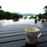 【美食】南投 。向山咖啡廳 台灣惠蓀咖啡 @ 日月潭景點。所長茶葉蛋好吃。日月潭無敵湖景。向山遊客中心。下午茶甜點。
