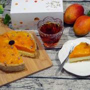 台中宅配甜點推薦,水母吃乳酪芒果乳酪塔,夏日限定好吃芒果甜點,減糖減油適合當滿月禮、生日蛋糕的健康特色乳酪蛋糕