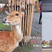 旅遊。宜蘭★斑比山丘 與二十幾隻小鹿親密互動 餵食 撫摸都可以! · 妮妮˙ˇ˙用類單記錄生活!!