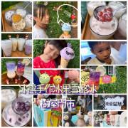 【台南食記】安平|冰熊手作水果雪酪冰-樹屋門市|造型冰淇淋超吸睛|不含人工色素保證70%以上水果成分