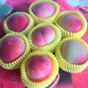 桃園市 美食 攤販 水果  拉拉山媽媽桃