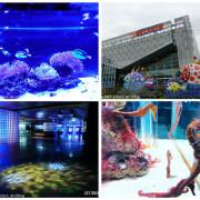 【屏東。長治】農業生物科技園區。觀賞水族展示廳。宛如置身水底世界。感受與上百種珍稀魚蝦美麗的身影共舞