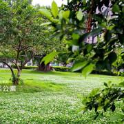 溜小孩、溜狗好去處 新莊塭仔底濕池生態公園