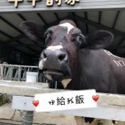[雲林]遊記-千巧谷牛樂園牧場