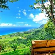 【台東 秘境 】台東秘境星龍花園、180度無敵海景、空中花園、 咖啡、美食、下午茶