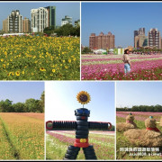 2019桃園花彩節。花現中壢花田童樂會