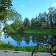 [遊記]【台東縣台東市】台東森林公園(黑森林)。琵琶湖美景~暢遊森林單車步道
