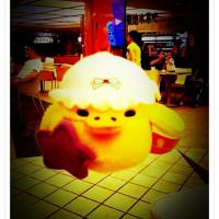 最貪吃的小雞