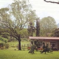 南投縣休閒旅遊 三育基督學院 照片