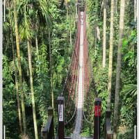 雲林縣休閒旅遊 景點 景點其他 華山情人橋 照片