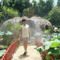 捲捲頭。品味生活在桃園一日遊推薦⎮向日葵迷宫、大王蓮體驗X水上蓮花鞦韆、IG打卡迷你版撒哈拉! pic_id=6402891