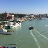 桃園市休閒旅遊 景點 海邊港口 永安漁港 照片