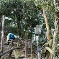 貪吃猴在大坑5號登山步道 pic_id=6700368