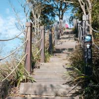 貪吃猴在大坑5號登山步道 pic_id=6700373