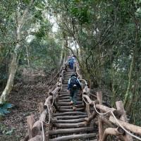 貪吃猴在大坑5號登山步道 pic_id=6700366