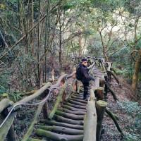 貪吃猴在大坑5-1號登山步道 pic_id=6700399