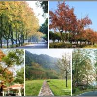 桃園市休閒旅遊 景點 景點其他 石門水庫 照片